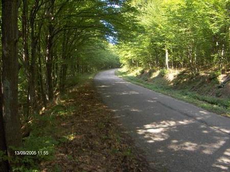 Kerékpártúra a Pilisben