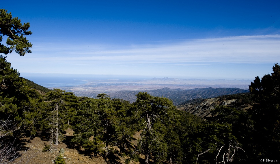 80730-View_of_Chrysochou_bay_from_the_Troodos_mountains_lrg.jpg