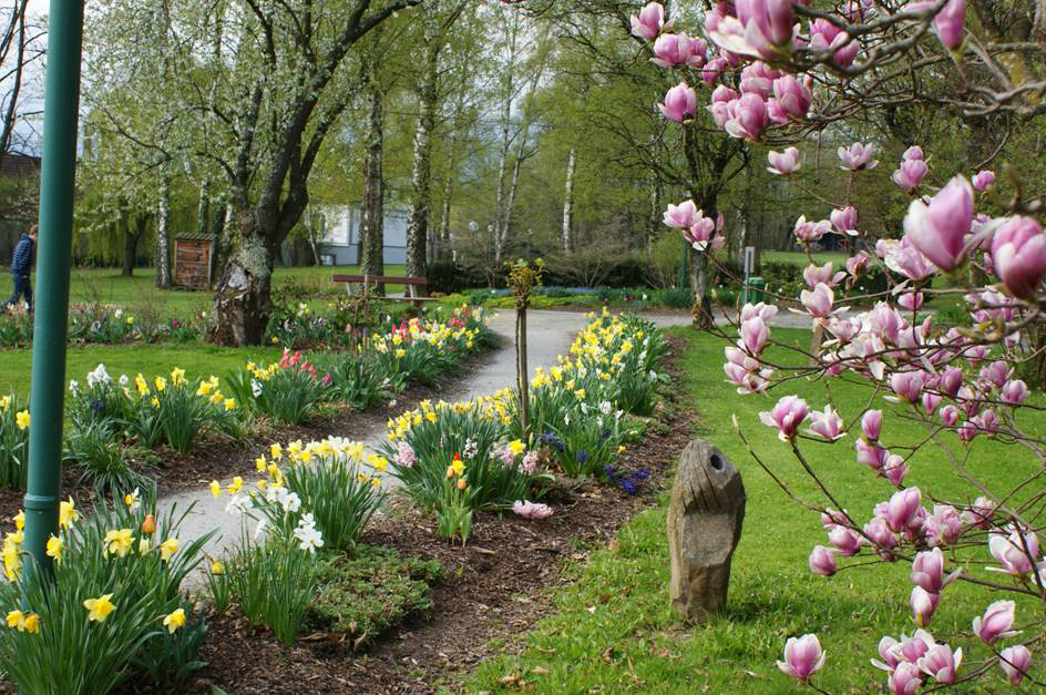 80750-Schlosspark-P-llau_Blumen-c-TV-Naturpark-P-llauer-Tal.jpg