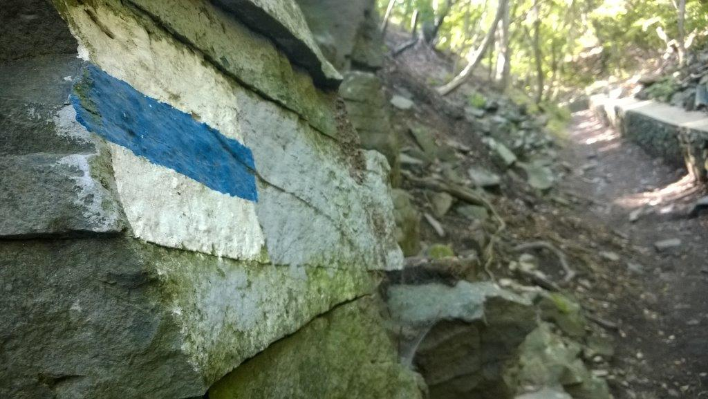 Kék jelzés ForrĂĄs: Mozgásvilág.hu