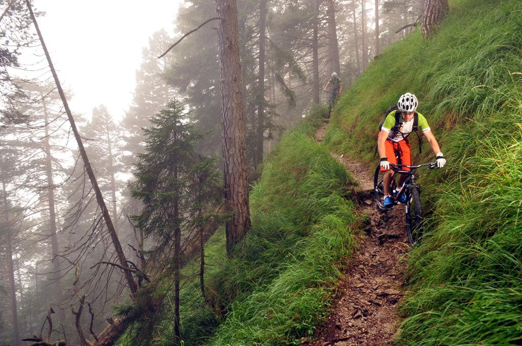 Single-trail Garmisch ForrĂĄs: Paraferee - Mozgásvilág.hu