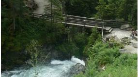 Wilde Wasser - ahol a vadvíz ered