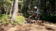 Koroška downhill kör
