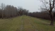 Kisbukó - futás a Túr mentén