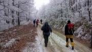 Téli túra a Bükk-hegység déli lejtőin