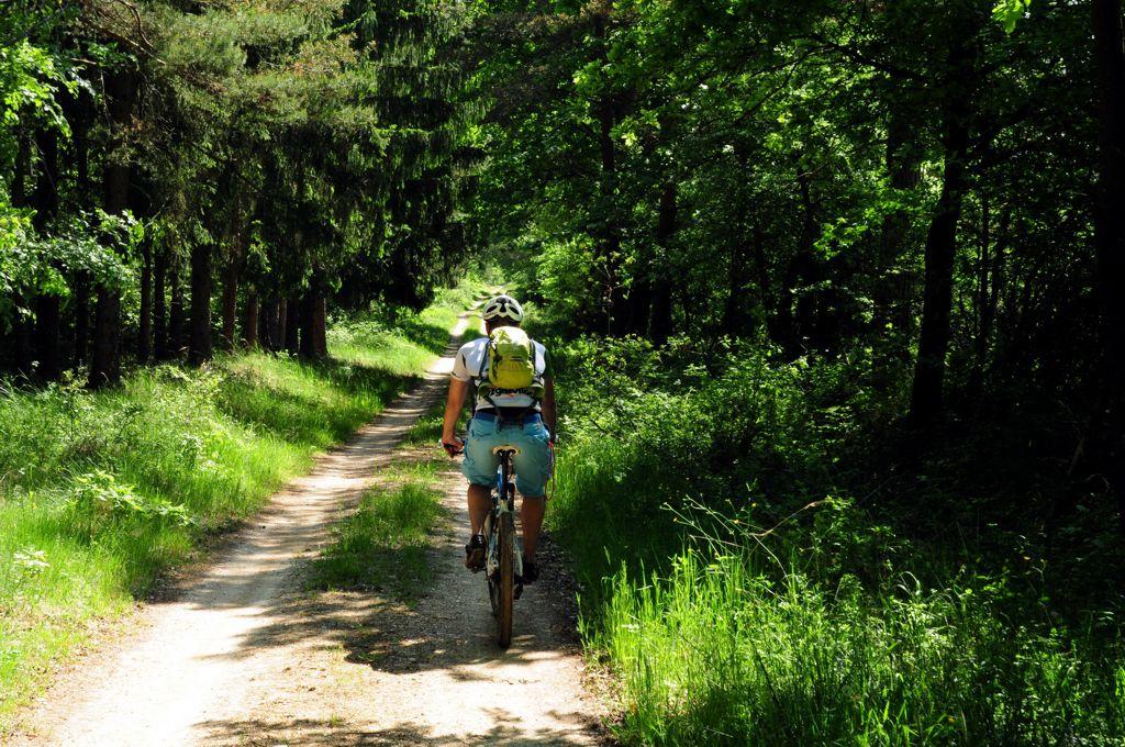 Kíméletes őrségi kerékpártúra ForrĂĄs: Paraferee - Mozgásvilág.hu