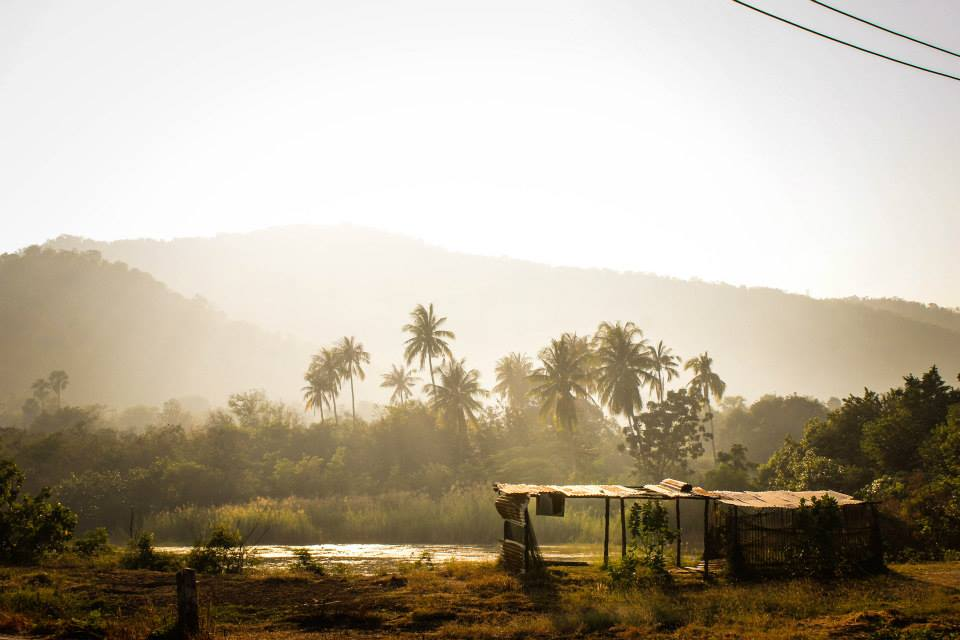 Thaiföld Forrás: Schneidhoffer Gábor