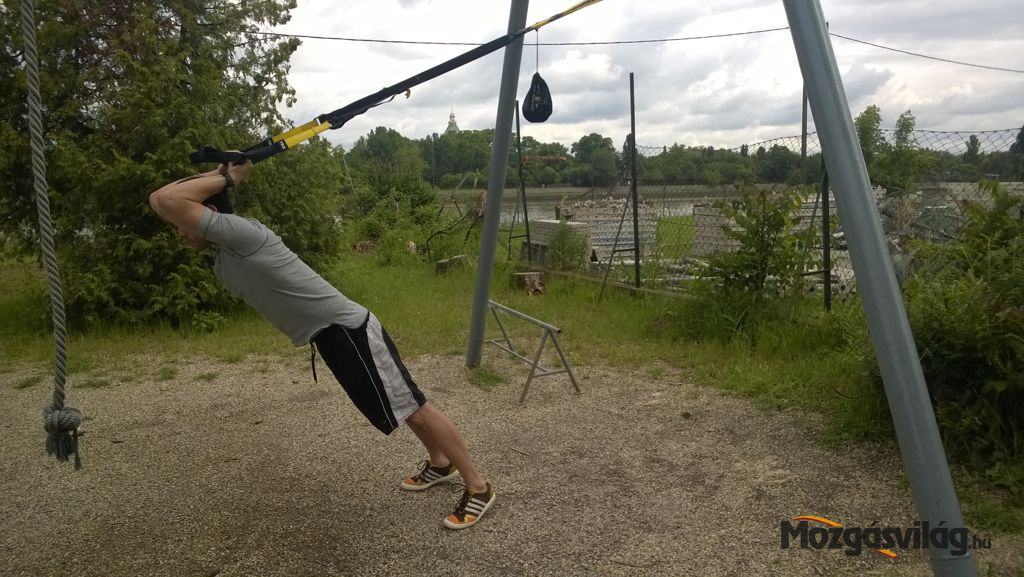 Triceps Press - Végső pozíció Forrás: Mozgásvilág.hu