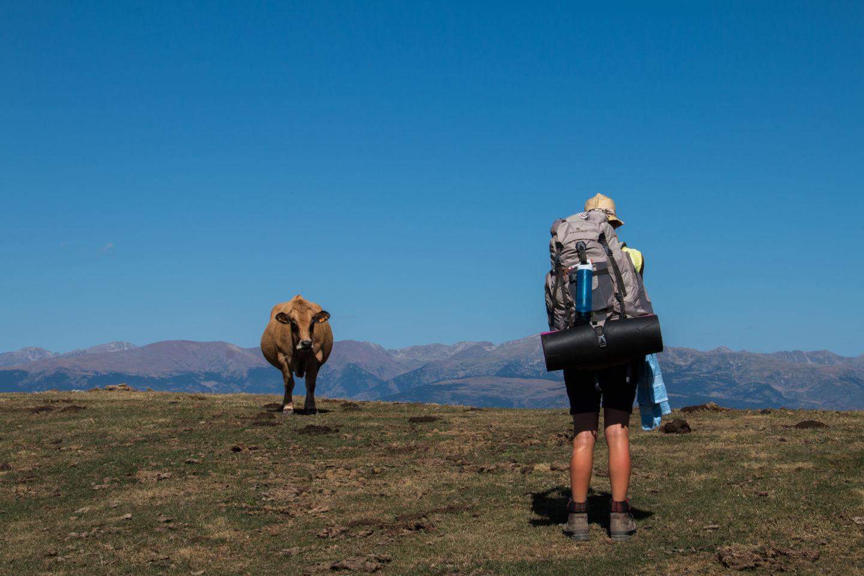 Transzpireneusok Trekking Forrás: rada