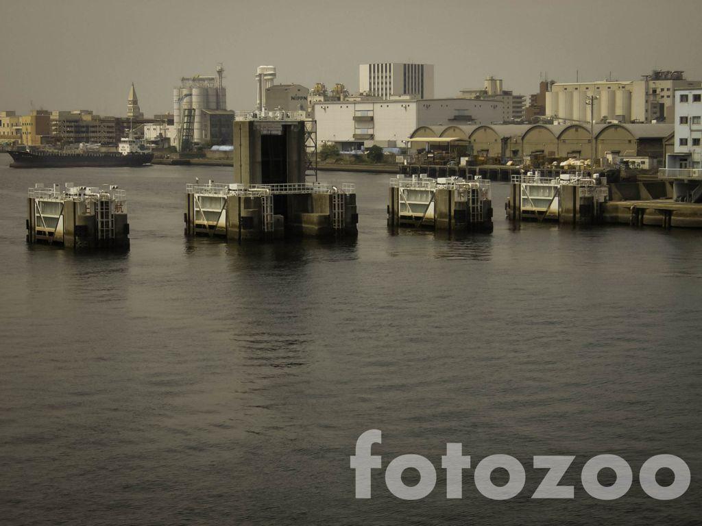 A nemszép Japán Forrás: Fotozoo - Horváth Zoltán