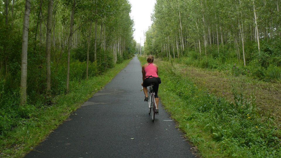Velencei-tó kerékpárút