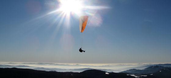 81164-paragliding.jpg