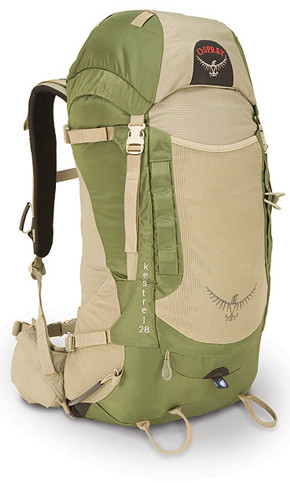 81593-osprey-kestrel-28-lichen.jpg