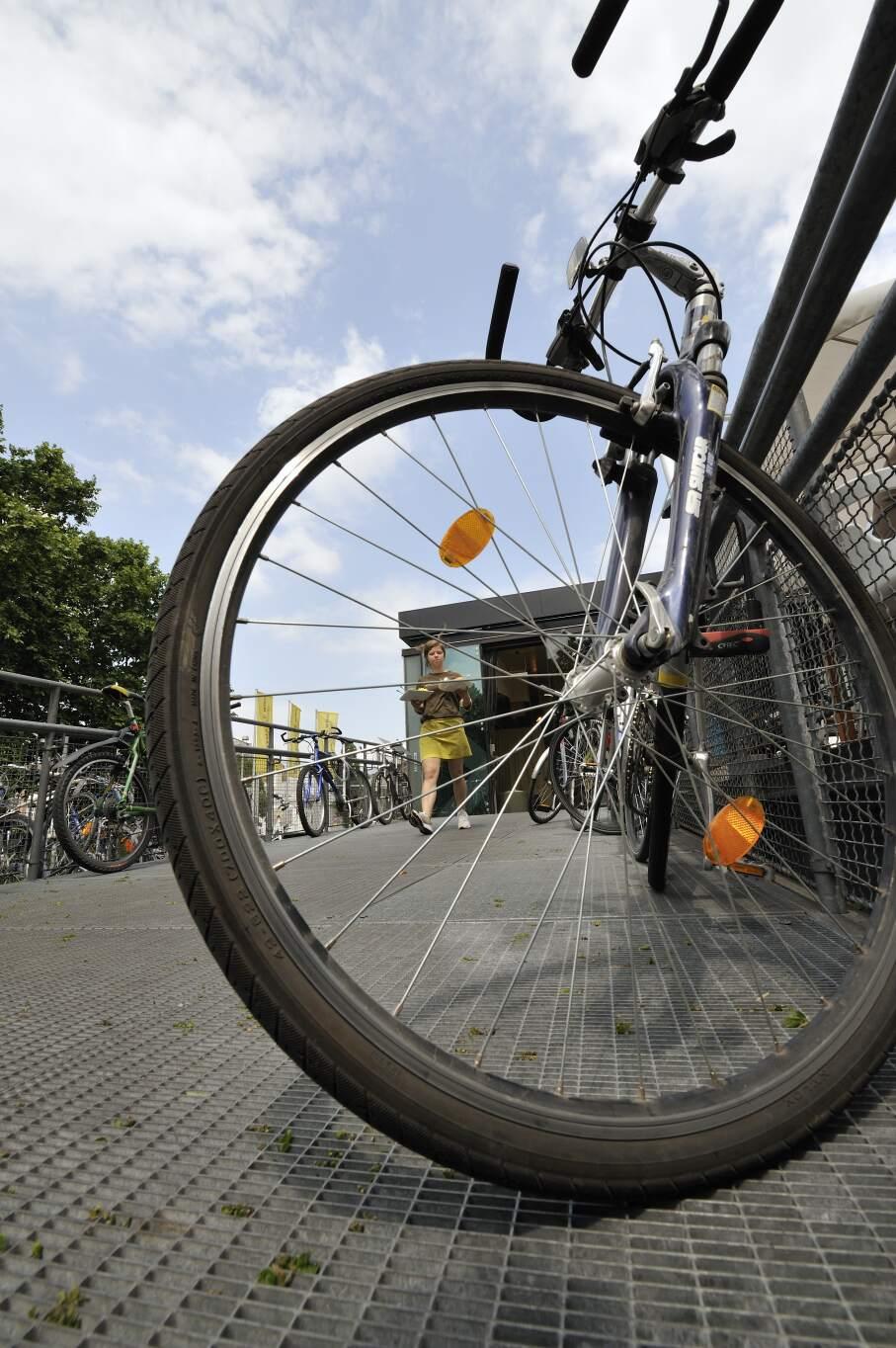 81710-Bicikli_Foto_Schaub-Walzer.jpg