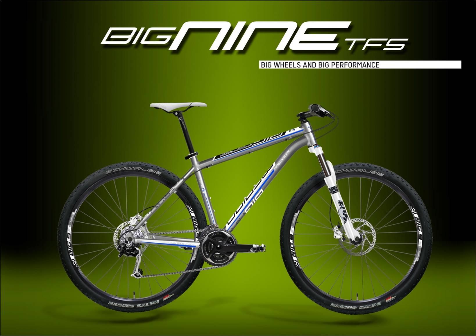 81931-Bignine-TFS.jpg