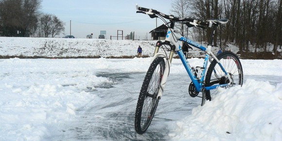 Schwalbe Winter