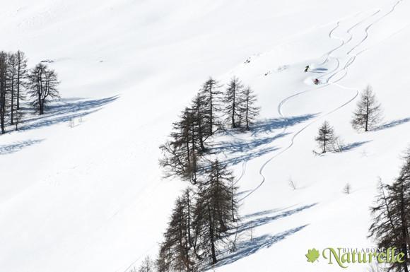 Naturelle-foto-Vasko-Gabor-8