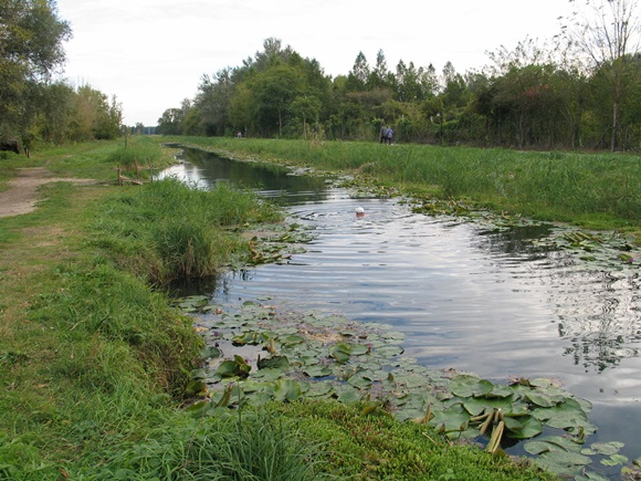 Hévízi-tó csatorna