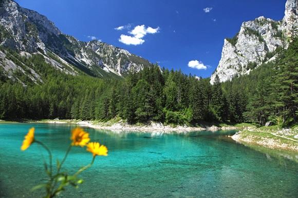 Zöld tó