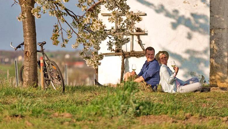 Tavaszi kerékpártúrák és újbor kóstolás Forrás: (c) Niederösterreich-Werbung GmbH
