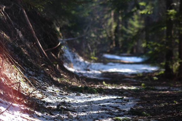 Téli futóútvonal Forrás: creative common