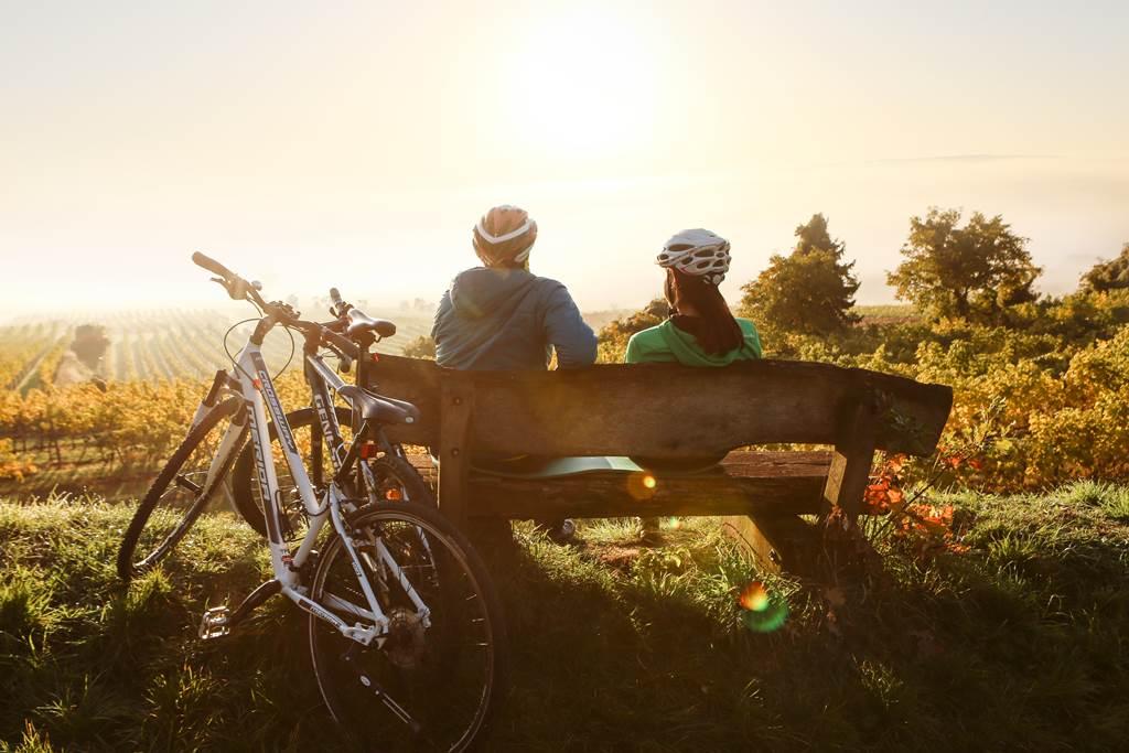 Traisental kerékpárút pihenő Forrás: © Niederösterreich-Werbung/schwarz-koenig.at