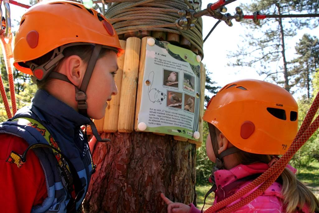 Infó tábla a madarak fészkelési szokásairól Forrás: www.mozgasvilag.hu