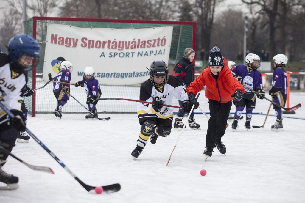 Hoki Forrás: telisportagvalaszto.hu