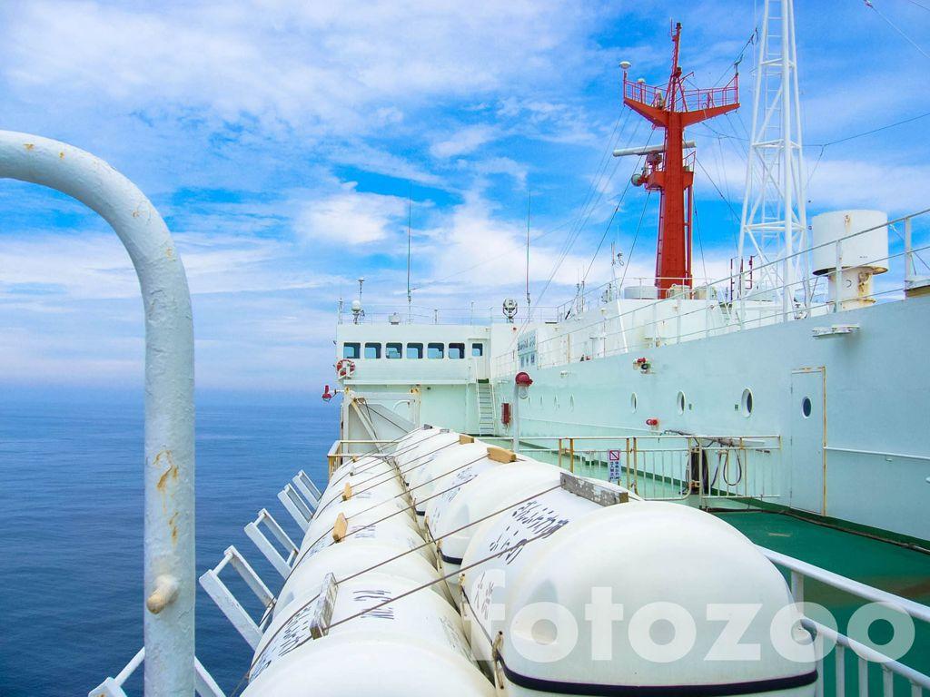 Békésen szeljük a Csendes-óceán habjait, bezzeg aki március 11-én utazott erre… Forrás: Fotozoo - Horváth Zoltán