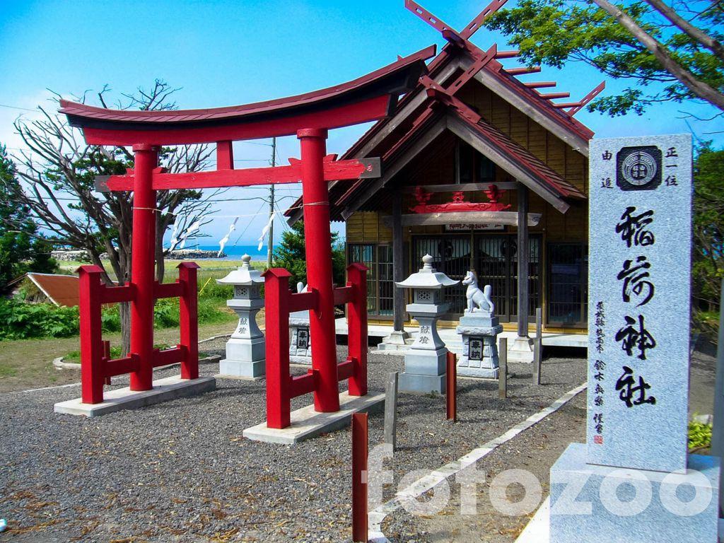 Klasszikus sintó szentély, előtérben a toriival Forrás: Fotozoo - Horváth Zoltán