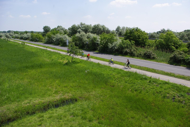 Kerékpárút a dinnyési kilátóból Forrás: Kakuk András Mozgásvilág