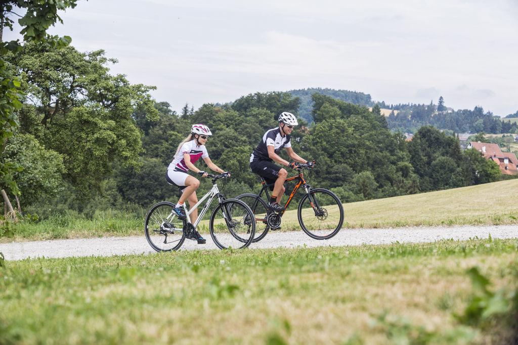 KTM cross kerékpárok 2016