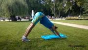 Csípőemelés fekvőtámaszból