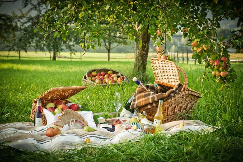 Pihenés az őszi gyümölcsös régióban, a Mürz-völgyében Forrás: (c) fotodesign.at