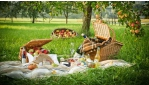 Pihenés az őszi gyümölcsös régióban, a Mürz-völgyében