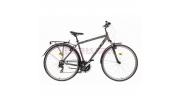 -10.000Ft Caprine Tour trekking kerékpár, mattszürke-zöld
