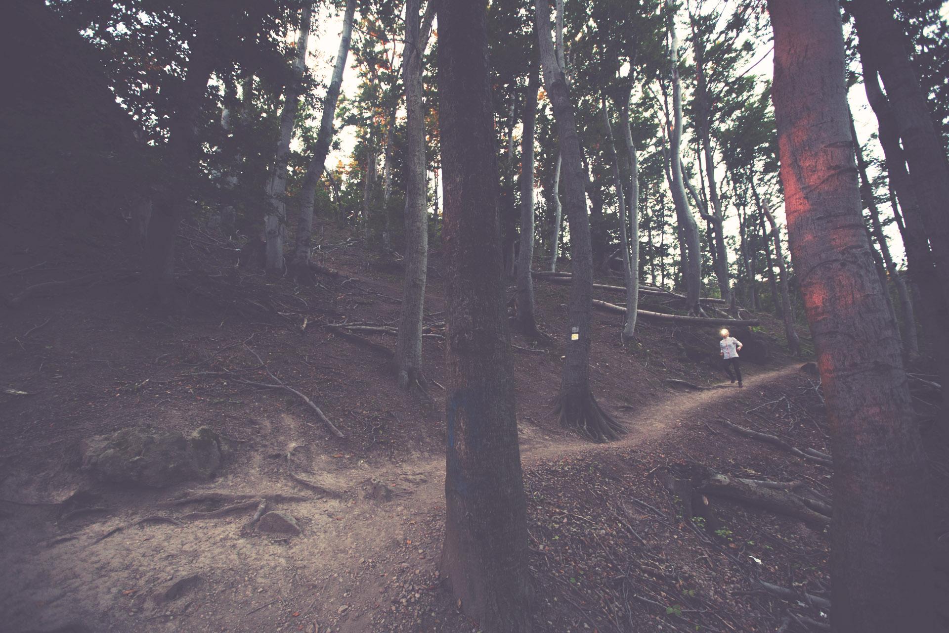 Salomon Szentendre Trail