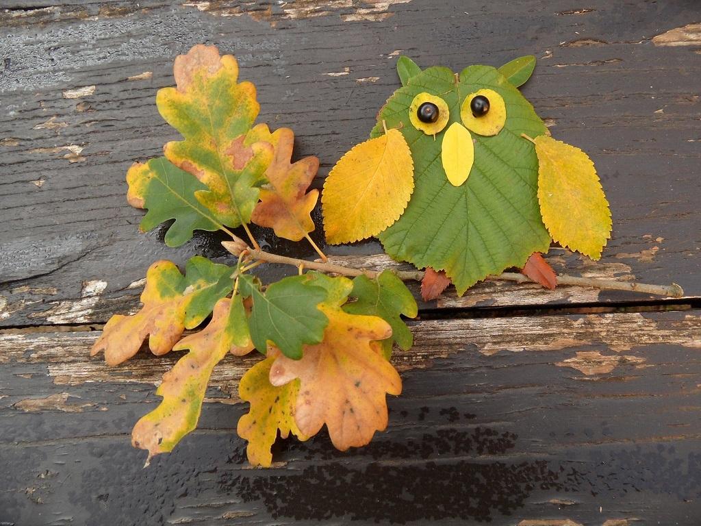 Land art ősszel (Fotó: Becsei Katalin)