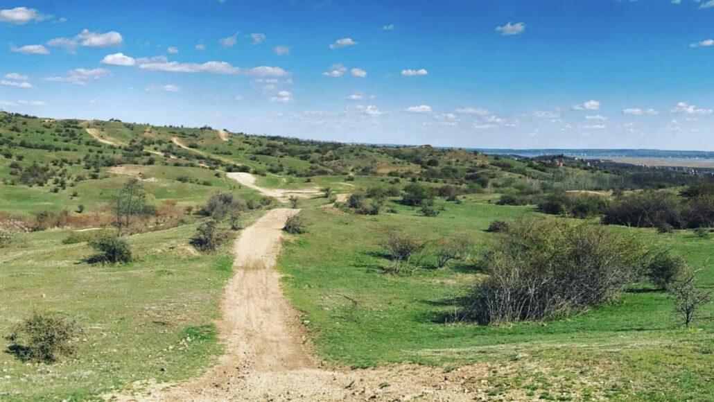 Suki Trail