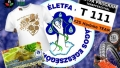 Életfa Terepfesztivál és családi nap 2012   www.mozgasvilag.hu