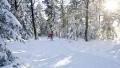 Böhmerwald - Ausztria sífutó és nordic cruising tábor | www.mozgasvilag.hu