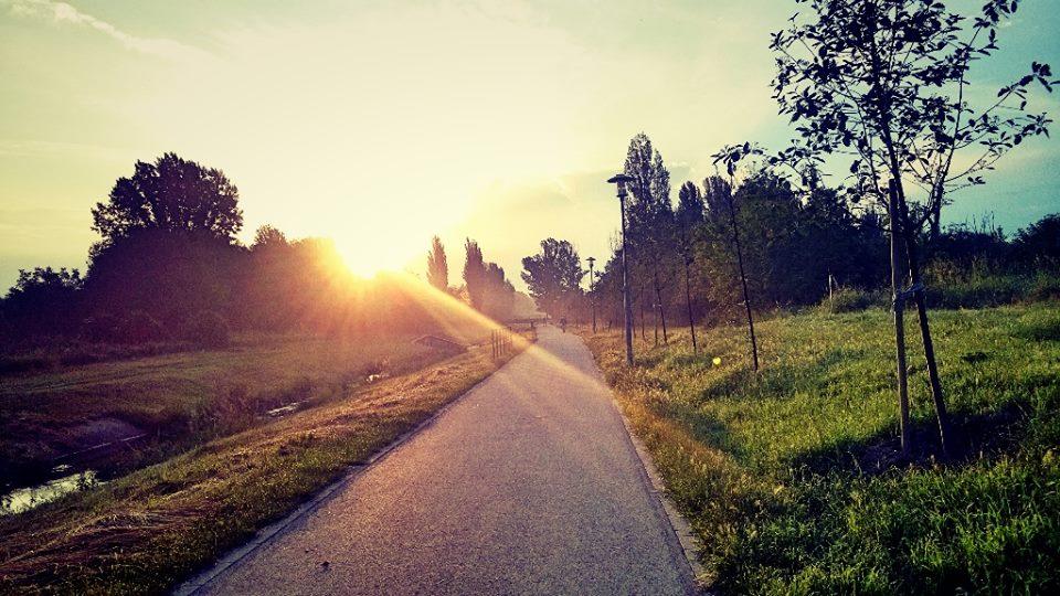 Hajnali futópanoráma - Rákospatak-menti kerékpárút; Forrás:Mozgásvilág