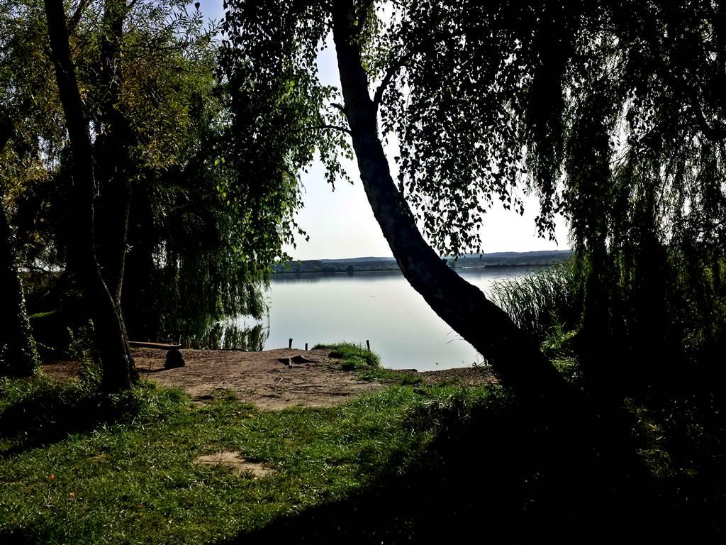 A Kányavári sziget belülről Forrás: www.mozgasvilag.hu