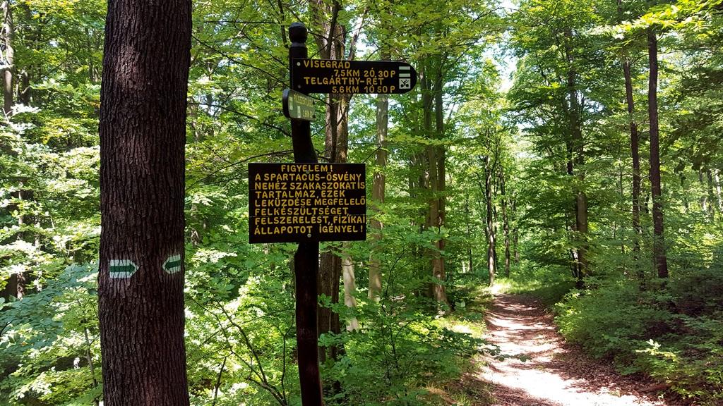 Elérkeztünk a Spartacus-ösvény kezdetéhez Forrás: Mozgásvilág.hu