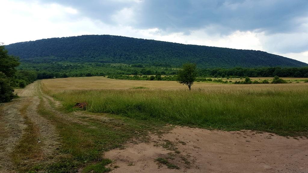 Bal oldalunkon emelkedik a Pilis-hegy, amire majd fel fogunk kapaszkodni Forrás: Mozgásvilág.hu