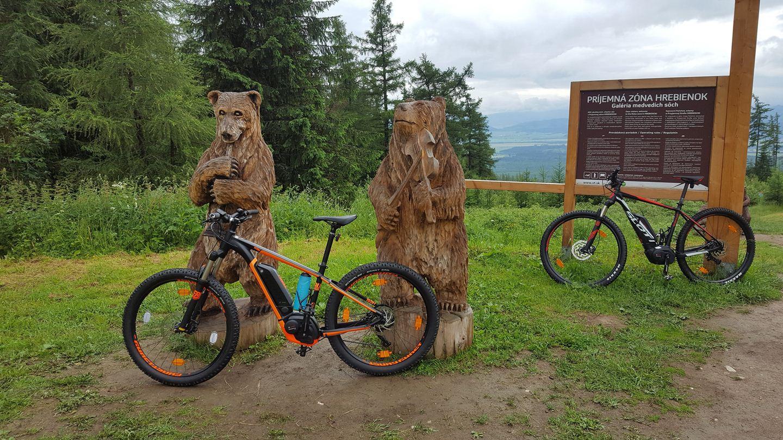 E-bike gyakorlás a faragott medveszobroknál Forrás: Mozgásvilág