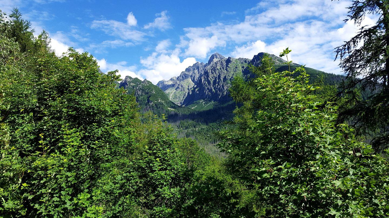 Úton a Tarajka felől a Kis-Tarpataki-völgybe - előtérben a Lomnici-csúcs Forrás: Mozgásvilág.hu