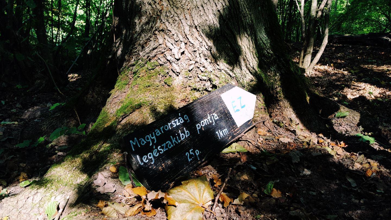 A Magyarország legészakibb pontja tábla elhagyatva egy fa tövében Forrás: Mozgásvilág.hu