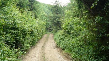 Erdőbénye túraút