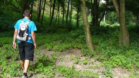 Gyalogtúra a sípálya körül